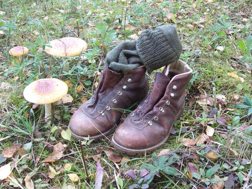 vlc-ttd-recreation-hiking-001