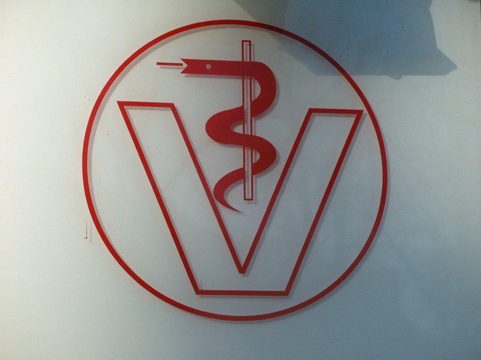 nss-el-healthwellbeing-vets-1