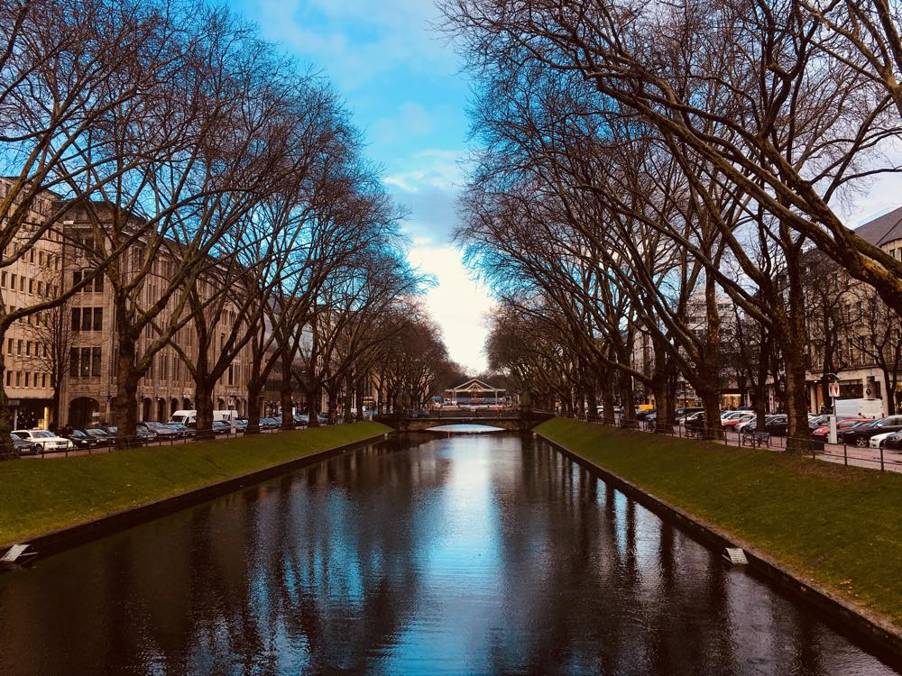 A city canal with trees
