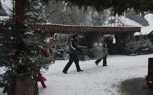 Two guys carrying Christmas tree through snow